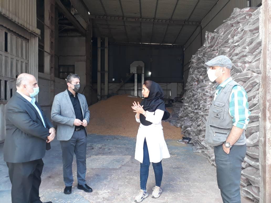 بازدید معاون فرماندار شهرستان رودبار از صنایع این شهرستان به مناسبت هفته محیط زیست